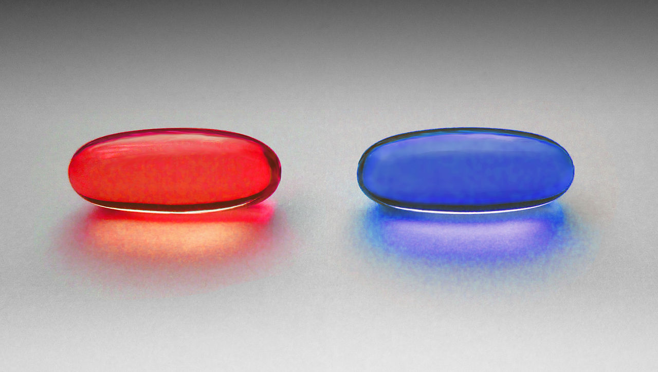 You take the blue pill—the story ends, you wake up in your bed and believe whatever you want to believe.